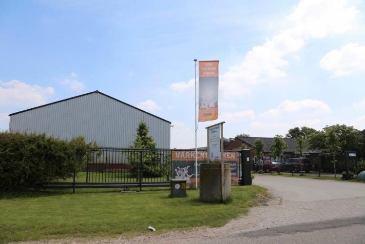 Hollantilaisten sikayrittäjien tavoitteena läpinäkyvä sikatuotanto