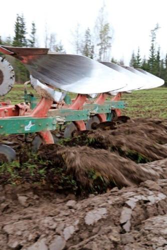 Pysyvien nurmien status jarruttaa nurmien kehitystä