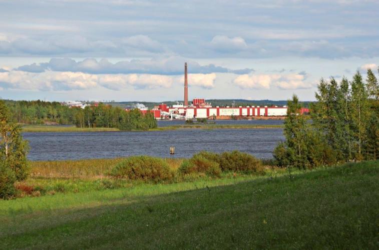 Sahateollisuutta ei pidä unohtaa biotalous-Suomessa