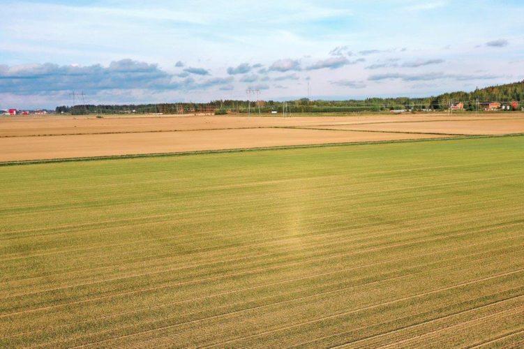 Suomen suurimmat tilat: Vain 12 prosentilla tiloista viljelyssä yli 100 hehtaaria
