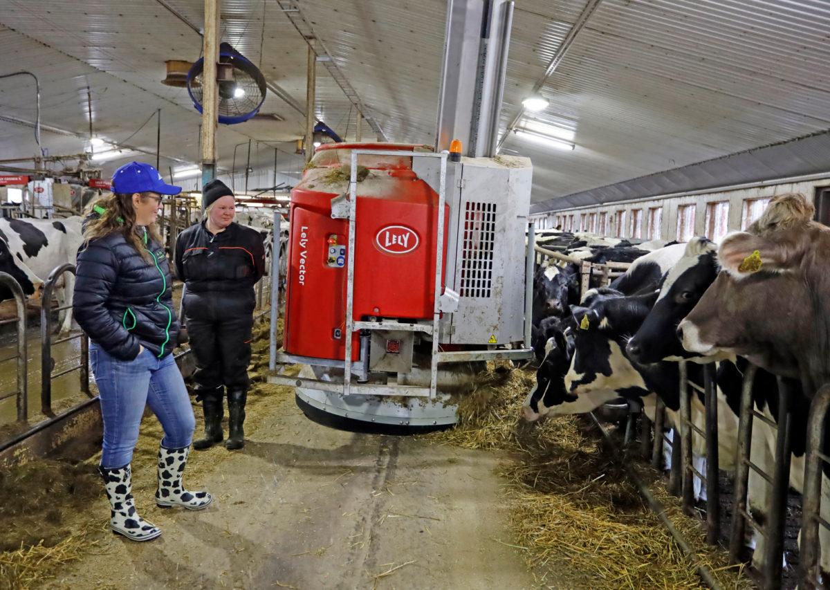 Lely Vector on tuonut uutta helppoutta Stina Kurjen (vas.) ja Kimmo Kaskisen navetan rutiineihin. Kun seosrehu jaetaan ja pusketaan lehmien eteen automaattisesti, helpottaa se myös navetalla työskentelevän Minna Surakan töitä. Vector tekee ja jakaa neljää eri seosrehua eri eläinryhmille.