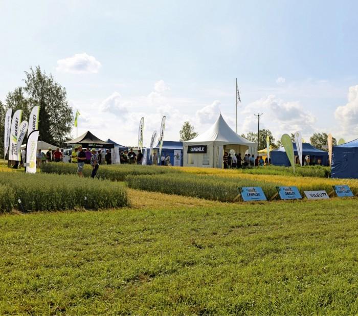 Pohjanmaan Peltopäivä järjestettiin ensimmäistä kertaa. Tapahtumalle on ollut tilausta. Alueella on runsaasti kasvinviljelyä, mutta siihen keskittyvä näyttely puuttui. Näillä näkymin näyttely järjestetään uudelleen kahden vuoden kuluttua.