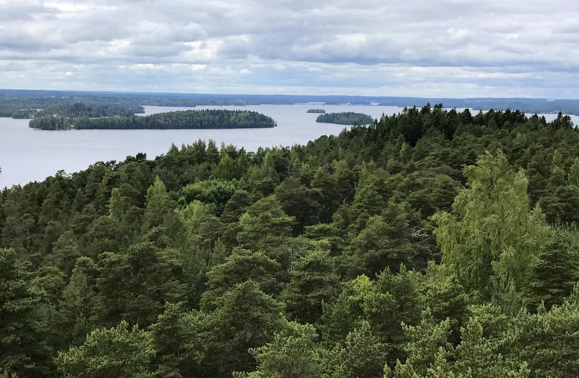 Metsien hiilinielut ja varastot, asenteiden juhlaa